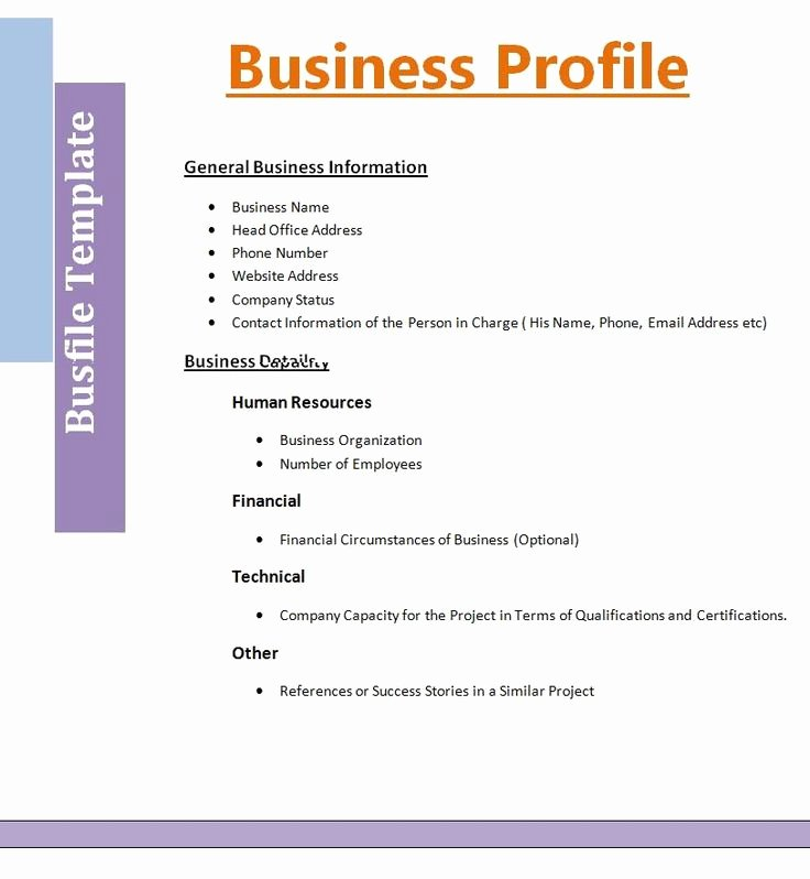 Mini Business Plan Template Inspirational Contoh Business Plan Powerpoint Contoh Raffa