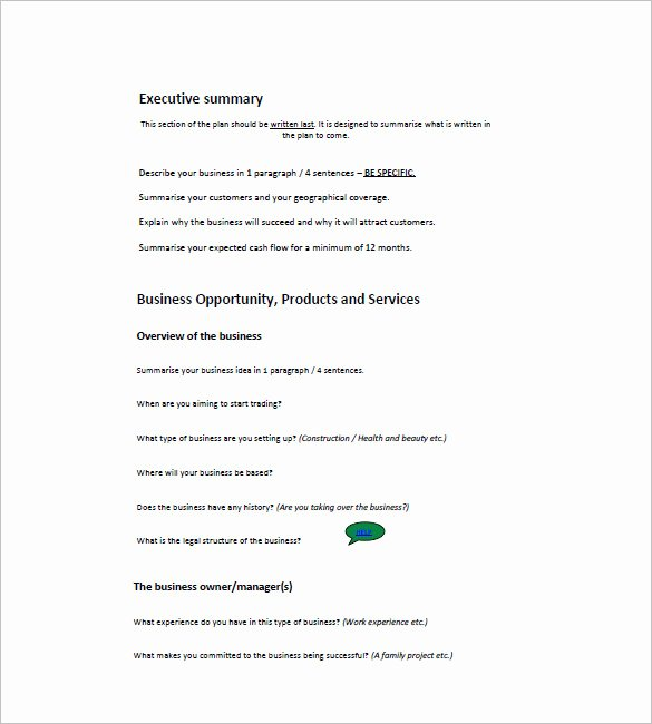 Mini Business Plan Template Lovely Small Business Plan Template 18 Word Excel Pdf Google