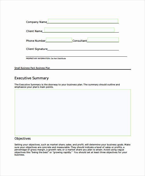 Mini Business Plan Template New Sample Short Business Plan Template 7 Free Documents