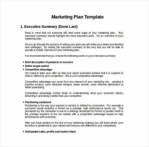 Mini Business Plan Template Unique Business Plan Template Word Doc Erreport269 Web Fc2