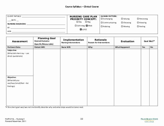 Nursing Education Plan Template Beautiful Image Result for Blank Nursing Care Plan Templates
