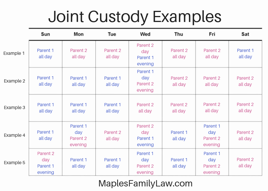 Parenting Plan Calendar Template Fresh How to Create Joint Custody Schedules with Examples
