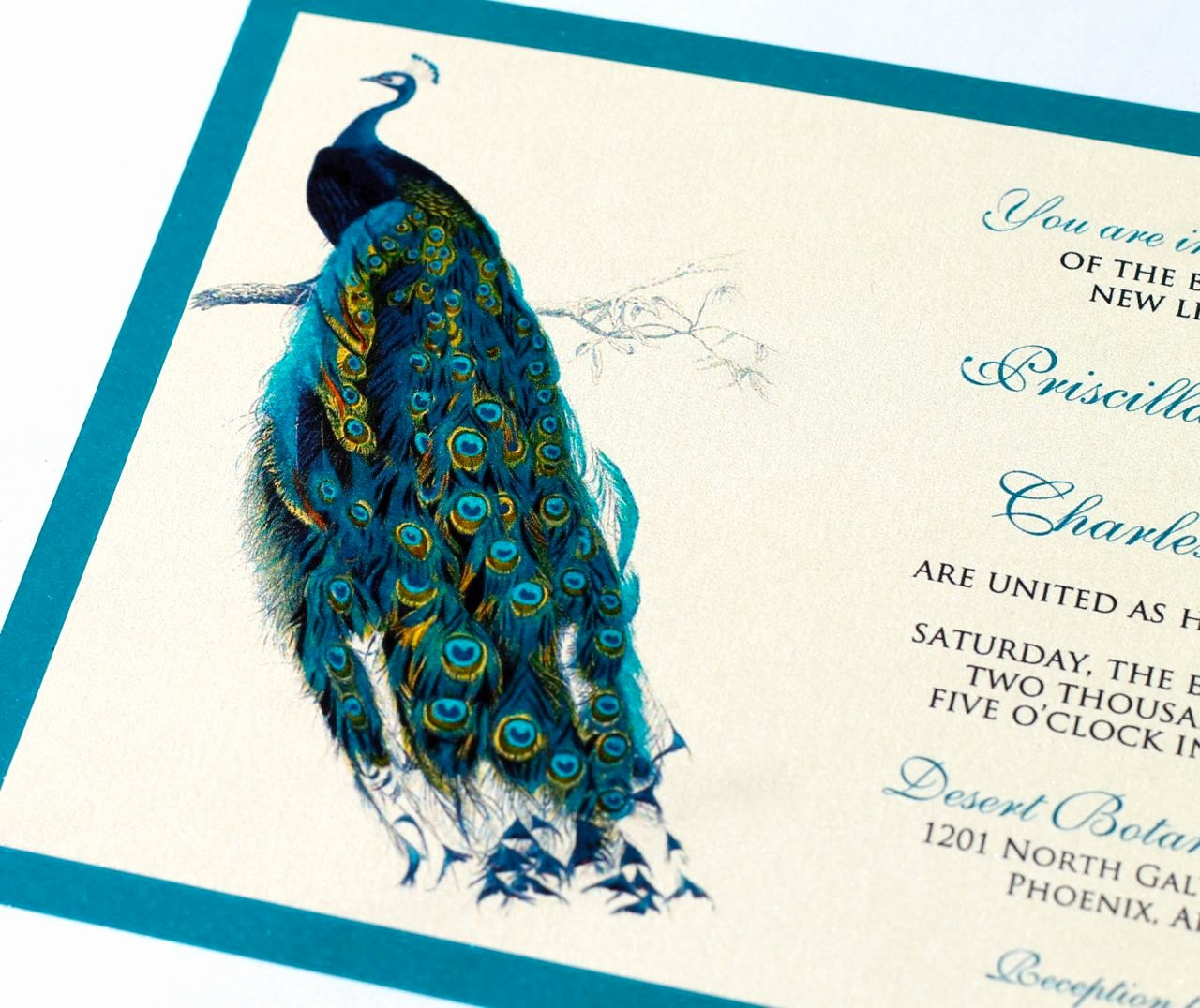 Peacock Invitations Template Free New Priscilla Peacock Wedding Invitation Sample Ivory Ecru