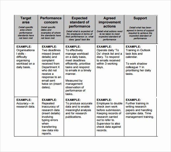 Performance Improvement Action Plan Template Best Of Sample Improvement Plan Template 13 Free Documents
