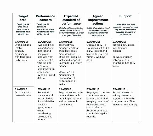 Performance Improvement Plan Template Excel Lovely Performance Improvement Plan Template