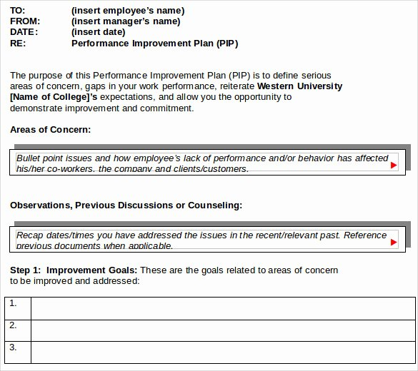 Performance Improvement Plan Template Word Elegant Sample Improvement Plan Template 13 Free Documents