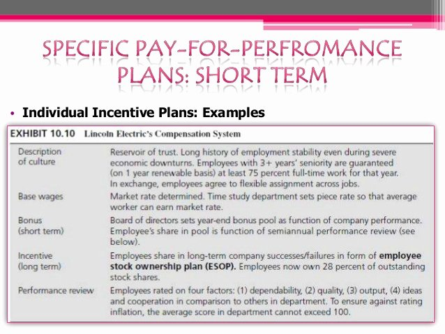 Performance Incentive Plan Template Luxury Pay for Performance Plan