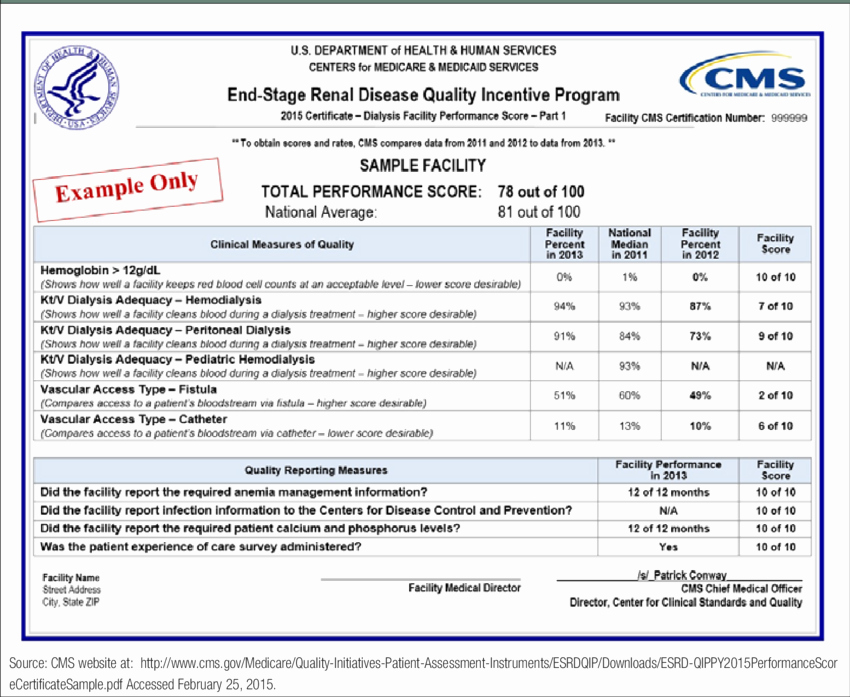 Performance Incentive Plan Template Unique Quality Incentive Program Sample 2015 Performance Score