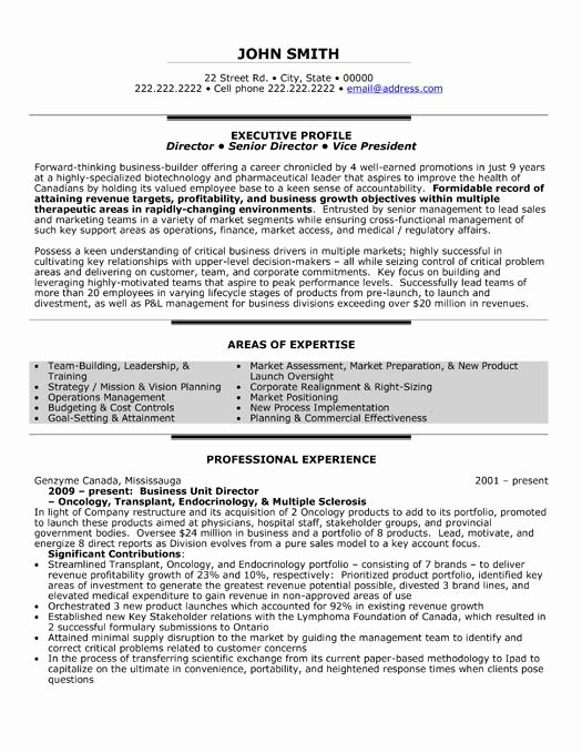 Performing Arts Resume Template Beautiful A Professional Resume Template for A Business Unit
