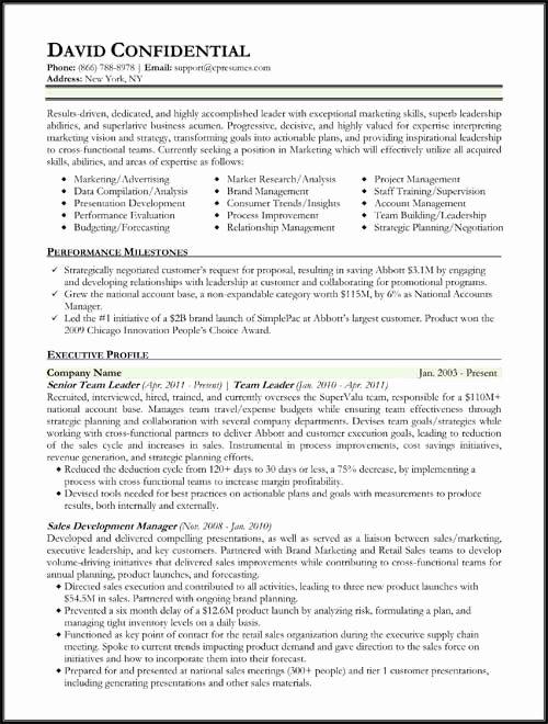 Performing Arts Resume Template Best Of Hybrid Resume format Work