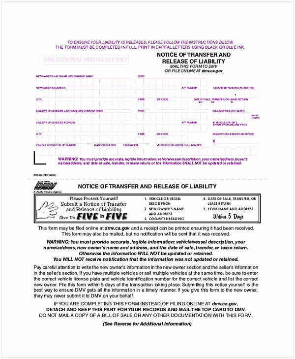 Personal Trainer Waiver form Template Awesome Personal Trainer Liability Waiver