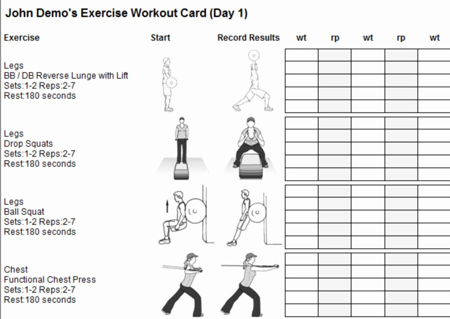 Personal Trainer Workout Plan Template Unique Personal Trainer software Programs