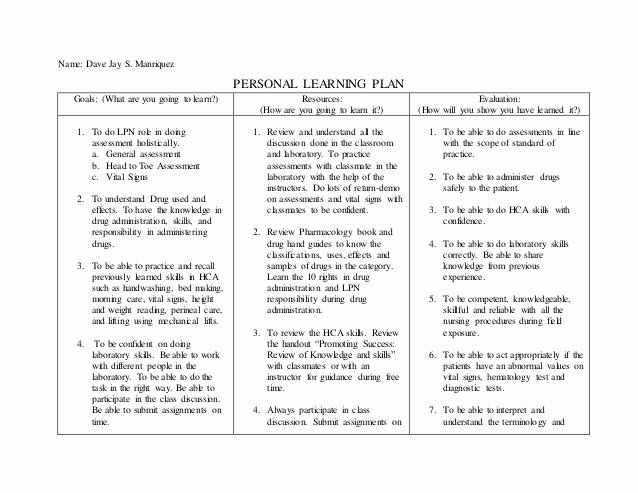 Personalized Learning Plan Template Elegant Personal Care Plan
