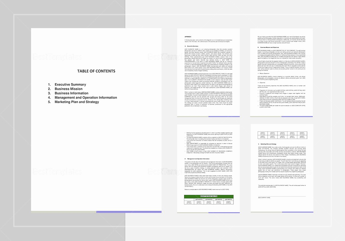 Photography Business Plan Template Lovely Graphy Business Plan Template In Word Google Docs