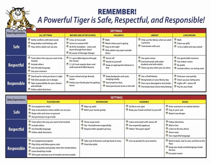 Positive Behavior Support Plan Template Best Of Pbis Matrix