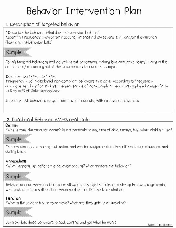 Positive Behavior Support Plan Template Elegant Behavior Intervention Plan Example