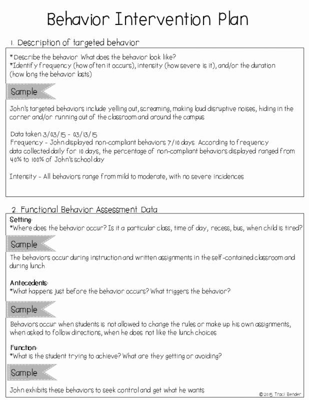 Positive Behavior Support Plan Template Lovely Behavior Intervention Plan Example