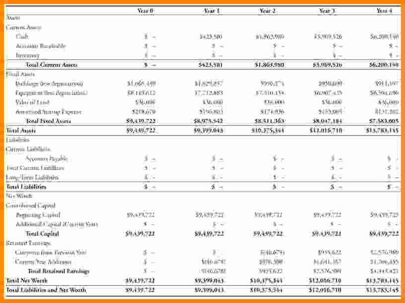 Pro forma Balance Sheet Template Best Of 7 Pro forma Balance Sheet