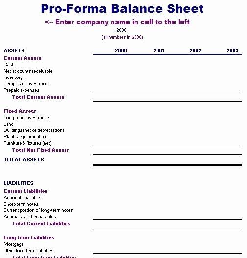 Pro forma Balance Sheet Template Inspirational Pro forma Financial Statements Template Free