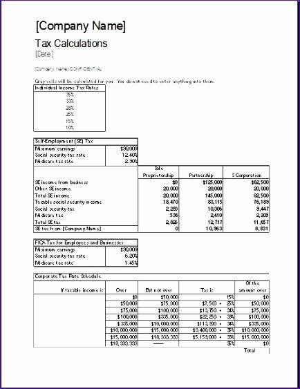 Pro forma Balance Sheet Template Luxury 8 Proforma Balance Sheet Exceltemplates Exceltemplates