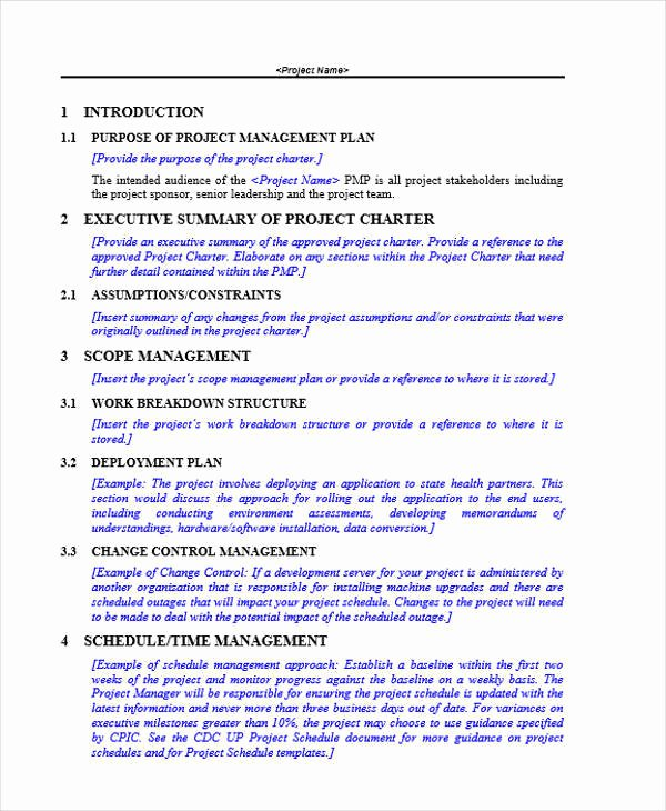 Project Rollout Plan Template Best Of 11 Project Plan Samples & Templates Pdf Docs Word