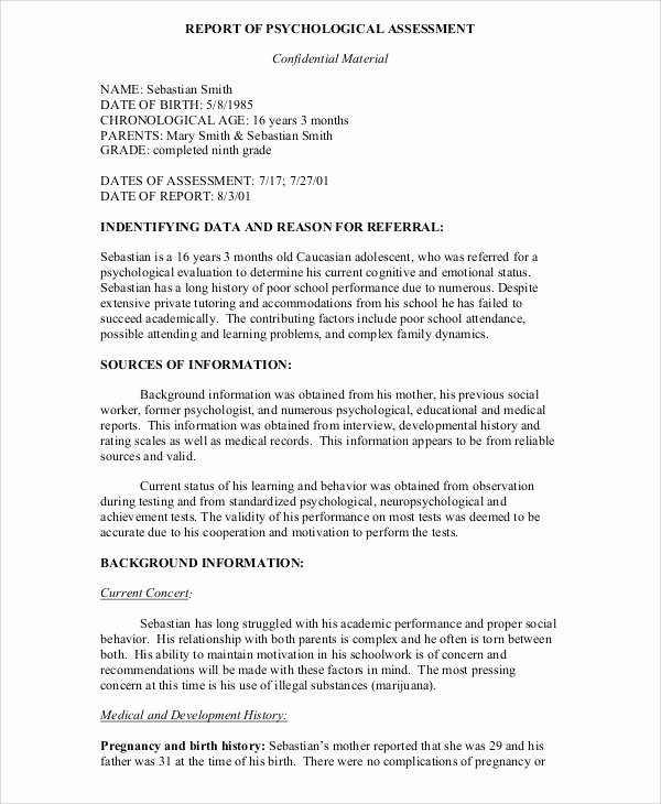 Psychiatric Evaluation form Template Luxury 10 Sample Psychological Reports Pdf Word Pages