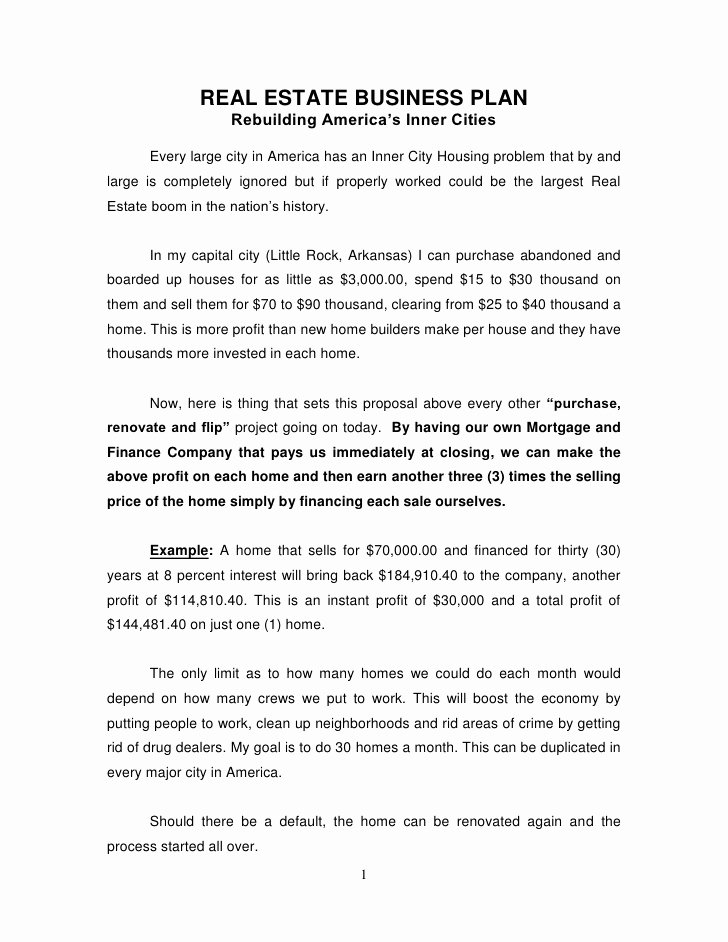 Realtor Business Plan Template New Real Estate Business Plan