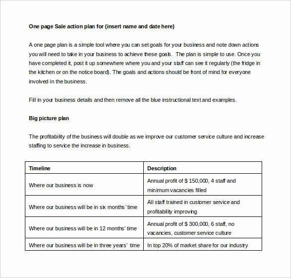Sales Action Plan Template Best Of Sales Action Plan Template – 11 Free Word Excel Pdf
