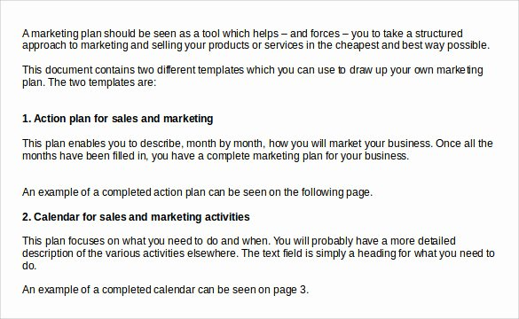 Sales Action Plan Template Luxury Sample Sales Action Plan 12 Example format