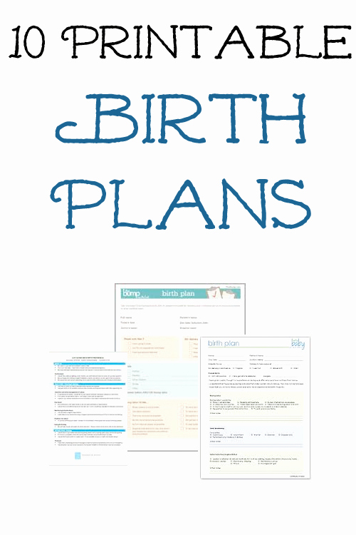 Sample Birth Plan Template Best Of 10 Free Printable Pregnancy Birth Plans & Hospital Bag