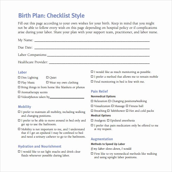 Sample Birth Plan Template Best Of Free 23 Sample Birth Plan Templates In Pdf Word