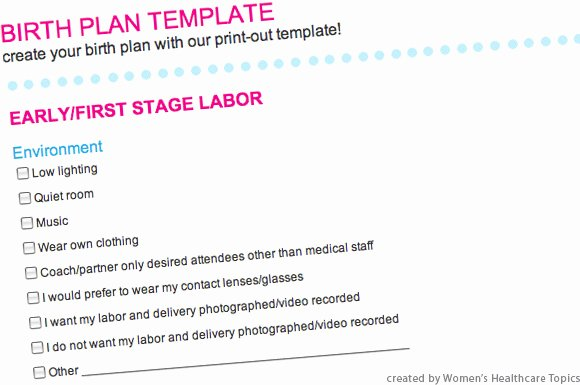 Sample Birth Plan Template Elegant Prenatal Courses and Birth Plan