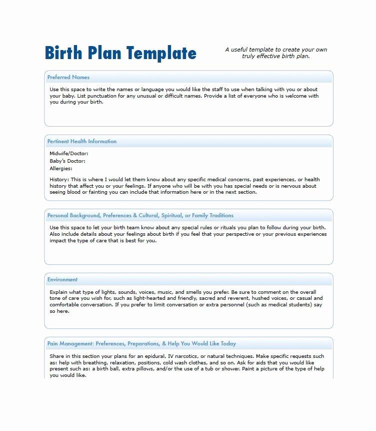 Sample Birth Plan Template Fresh 47 Printable Birth Plan Templates [birth Plan Checklist