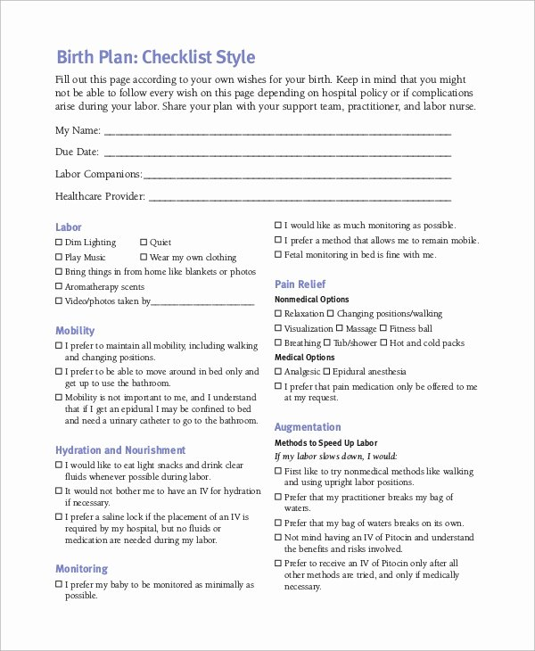 Sample Birth Plan Template Unique Birth Plan Example 11 Samples In Word Pdf