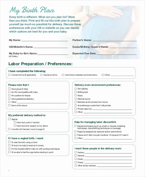 Sample Birthing Plan Template Beautiful Birth Plan Template 17 Free Word Pdf Documents