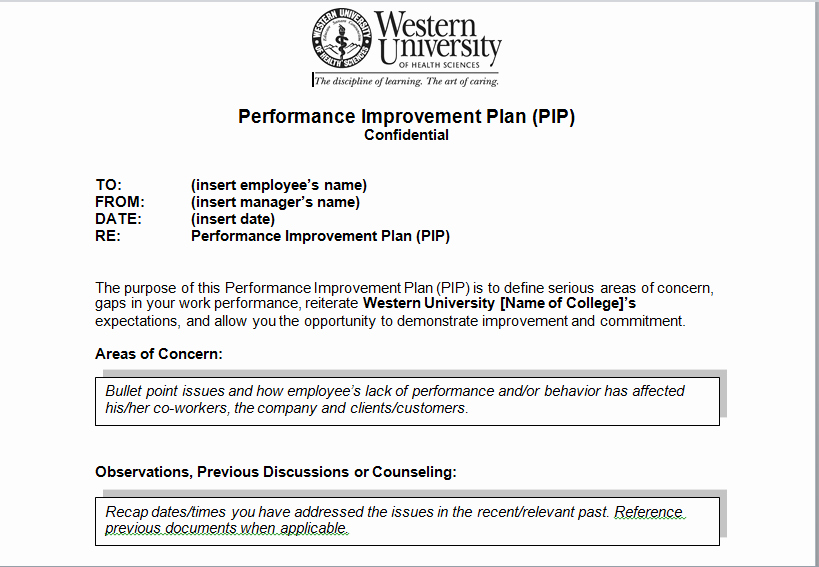 Sample Performance Improvement Plan Template Beautiful Performance Improvement Plan Sample Template Excel Tmp