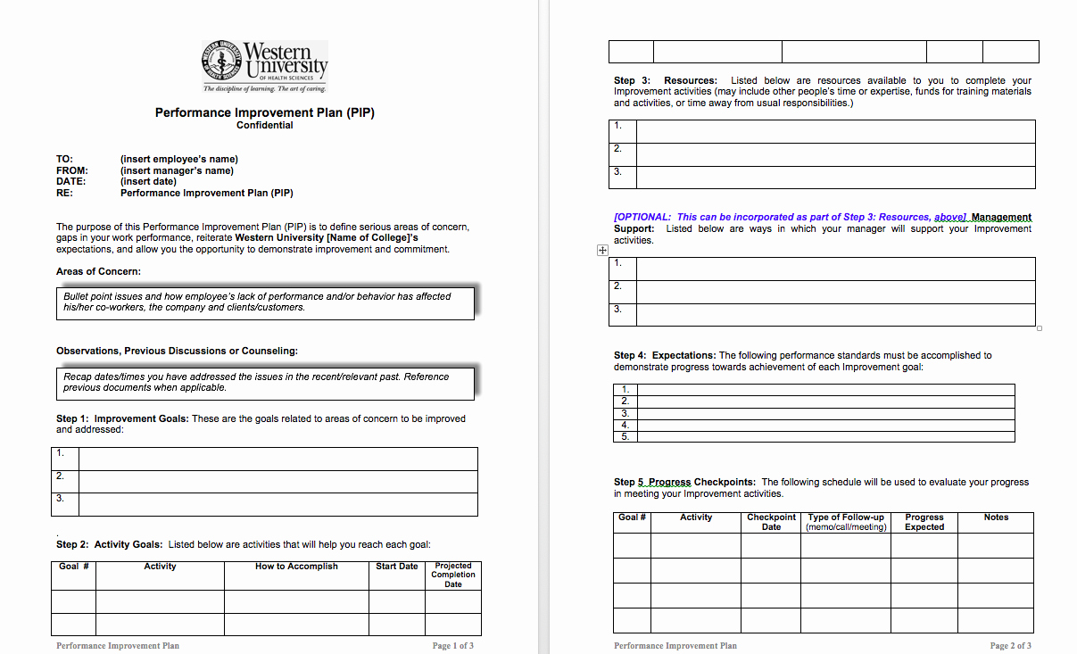 Sample Performance Improvement Plan Template Lovely Examples Performance Improvement Plans for Employees