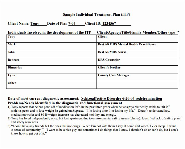 Sample Treatment Plan Template Fresh Treatment Plan Template