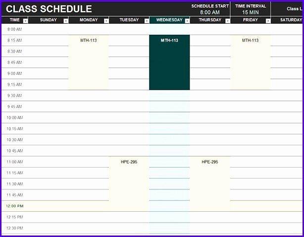 Schedule C Excel Template Unique 6 Excel Class Schedule Template Exceltemplates