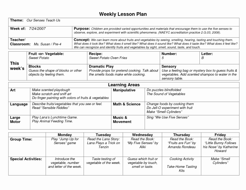 Standards Based Lesson Plan Template Lovely Image Result for Emergent Curriculum Planning Template