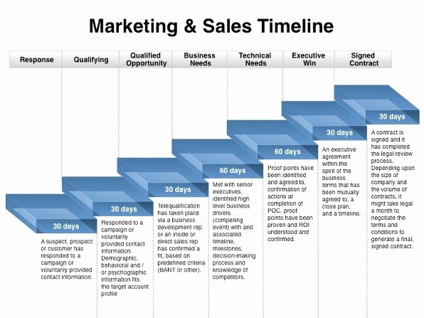 Strategic Plan Timeline Template Unique Marketing Plan Timeline Template