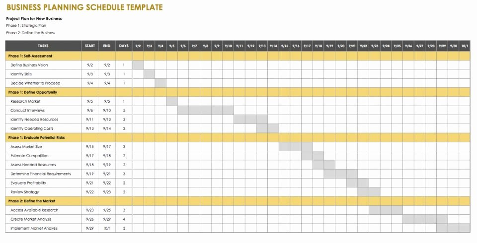 Strategic Planning Template Excel Unique Business Plan Xls Template 5 Year Debt Strategy Projection