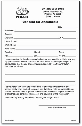 Surgical Consent form Template Lovely Consent forms