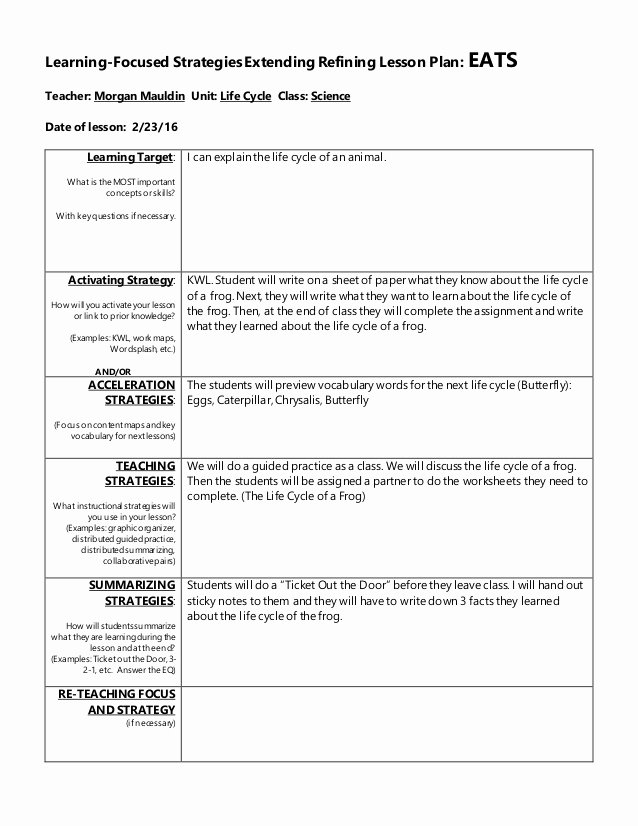 Teaching Strategies Lesson Plan Template Beautiful Lesson Plan 1
