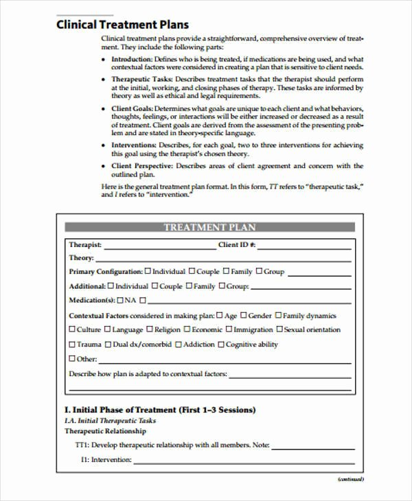 Therapist Treatment Plan Template Elegant 9 Treatment Plan Samples & Templates In Pdf Doc