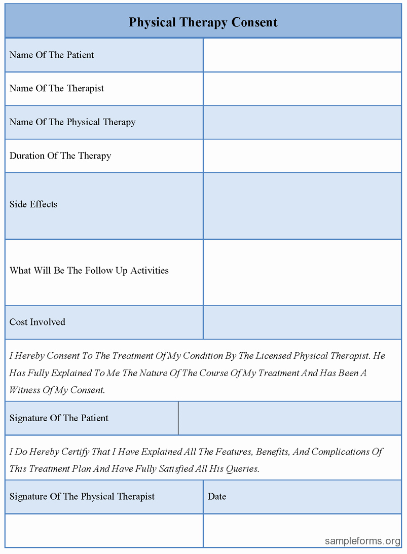 Therapist Treatment Plan Template Elegant Physical therapy Consent forms Sample forms