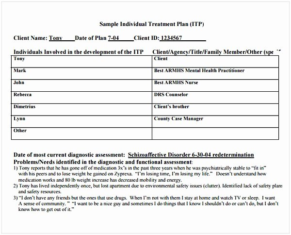 Therapist Treatment Plan Template New Counseling Treatment Plan Template Pdf