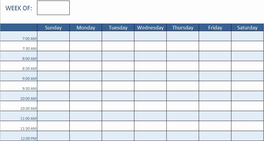 Training Schedule Template Excel Lovely Employee Training Schedule Template In Ms Excel Excel