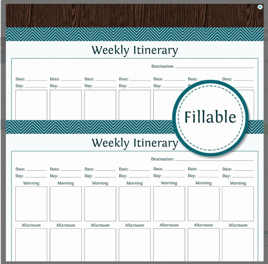 Travel Itinerary Planner Template Inspirational 10 Itinerary Template Examples
