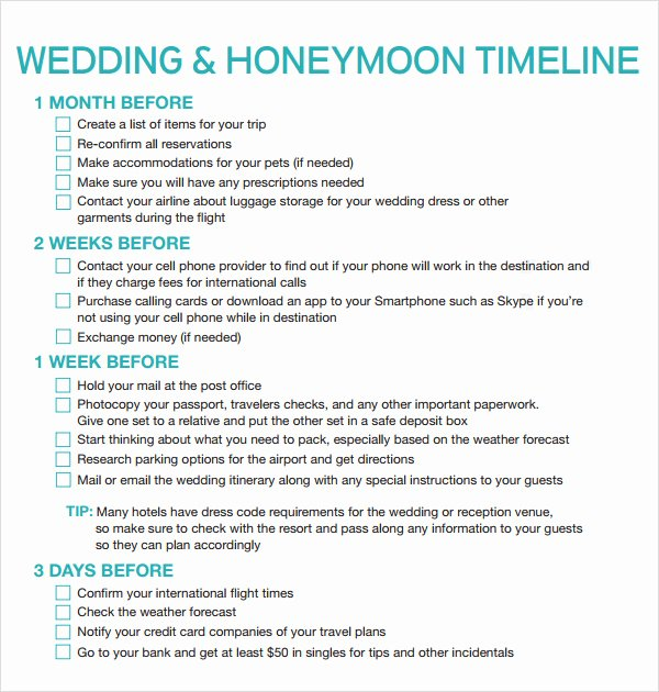 Wedding Planner Timeline Template Fresh Free 5 Sample Wedding Timeline Templates In Pdf Word